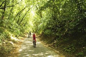 Újabb bringaút a Börzsönyben