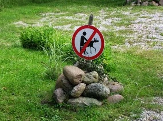 Absurd And Funny Road Signs (2)