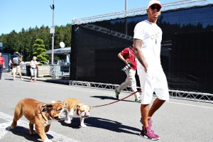Lewis Hamilton kutyaspermát spájzolt