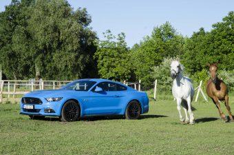 Ford Mustang GT: Bud Spencer reinkarnációja